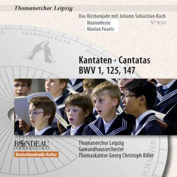kantaten-zu-den-marienfesten-thomanerchor-leipzig