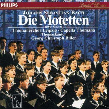 Die Motetten BWV 255-230
