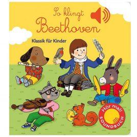 Kinderbuch über den Komponisten Ludwig van Beethoven